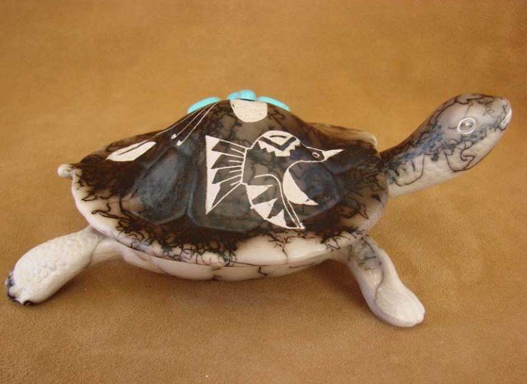Keya Schildkröte